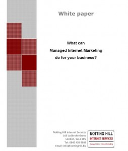 NHIS Managed Internet Marketing White paper